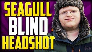 Seagull Performs Sick Blind Headshot - Overwatch Funny Moments 243