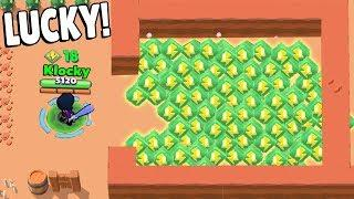 *INSANE* LUCKY WITH BIBI in Brawl Stars Glitches & Funny Moments & Fails | #35