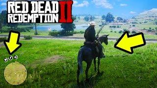 RED DEAD REDEMPTION 2 EASY MONEY, FAST MONEY, BEST HORSE, FUNNY MOMENTS, & RDR2 ONLINE!