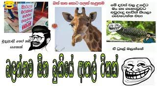 Sinhala fb jokes / Sinhala fb joke post / Bukiye athal eka pokurata part 8