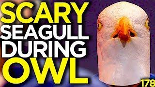 A Scary Seagull Appears During The Overwatch League - Overwatch Funny Moments 178