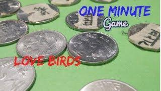 Love Birds | One Minute Coins Game | Fun game | Super ideas Ladies Kitty game by Mysterious Crafts