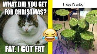 Hilarious Christmas Memes and Jokes That Will Make You Laugh