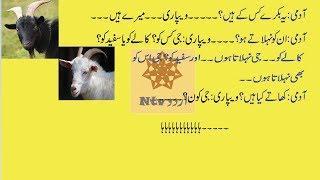 bakra eid urdu latifay by ntv urdu 2018||fun n jokes 2018