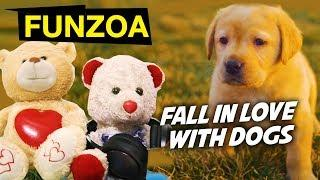 WATCH TO FALL IN LOVE WITH DOGS | Funzoa Funny Video For Cute Puppy Lovers