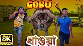 New Bangla Funny Video | Goru Dhaoa | New Video 2019 | Dr Lony Bangla Fun