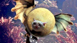 MONSTER HUNTER BUGS ULTIMATE | MHW FUNNY MOMENTS (WINS & FAILS) #50 | NOSKILLZ