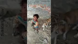 Baby's love | baby with puppy | Funny video's | dog with baby | puppy's video | baby viral